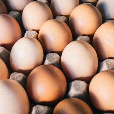 Chicchiricchì le uova!